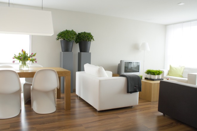 Paint Color Trends This Year Simply White