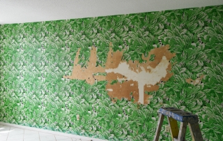 wallpaper removal sarasota