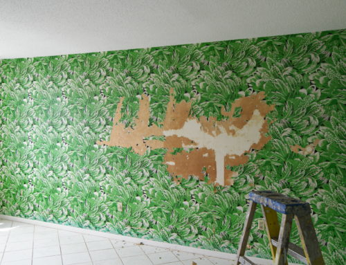 Professional Wallpaper Removal Services in Sarasota